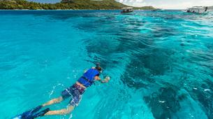 Snorkeling-Bora Bora-Snorkeling sur l'île de Bora Bora-2