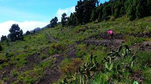 VTT-La Palma-Mountain biking excursions in La Palma-4