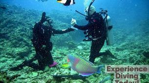 Scuba Diving-Malta-Discover Scuba Diving course in Sliema, Malta-6