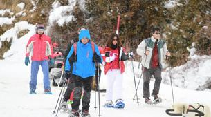Snowshoeing-Province of Huesca-Snowshoeing excursions in Tena Valley, Huesca-4