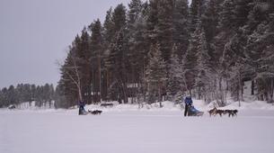 Dog sledding-Kiruna-Dog sledding excursions in Svappavaara near Kiruna-7