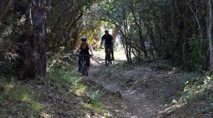 Vélo de Descente-Porto Vecchio-Randonnée VTT Plaine à Porto Vecchio-1