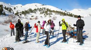 Snowshoeing-Province of Huesca-Snowshoeing excursions in Tena Valley, Huesca-2