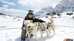 Dog sledding-Province of Huesca-Mushing excursions in Tena Valley, Huesca-6