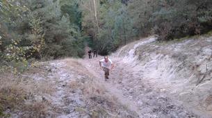 Rock climbing-Fontainebleau-Multi-Aventure dans la forêt de Fontainebleau-5