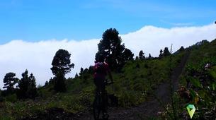 VTT-La Palma-Mountain biking excursions in La Palma-3
