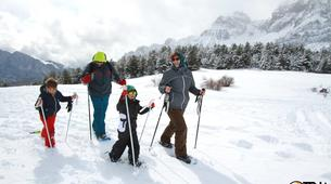 Snowshoeing-Province of Huesca-Snowshoeing excursions in Tena Valley, Huesca-3