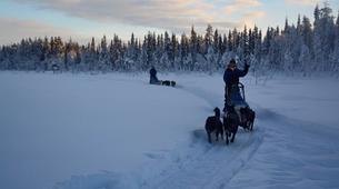 Dog sledding-Kiruna-Dog sledding excursions in Svappavaara near Kiruna-4