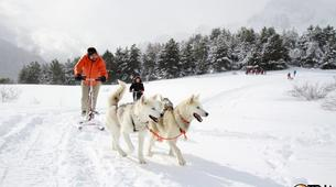 Dog sledding-Province of Huesca-Mushing excursions in Tena Valley, Huesca-10