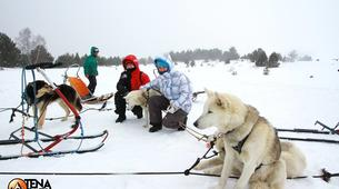 Dog sledding-Province of Huesca-Mushing excursions in Tena Valley, Huesca-3
