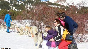 Dog sledding-Province of Huesca-Mushing excursions in Tena Valley, Huesca-8