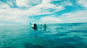 Scuba Diving-Zanzibar-PADI Discover Scuba Diving course in Paje, Zanzibar-1