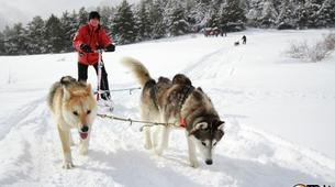 Dog sledding-Province of Huesca-Mushing excursions in Tena Valley, Huesca-12