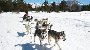 Dog sledding-Province of Huesca-Mushing excursions in Tena Valley, Huesca-1