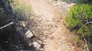 Mountain bike-Athens-Mountain bike tours in Hymettus Mountain, Athens-4