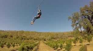 Zip line-Kruger National Park-Ziplining excursion near Kruger National Park-4