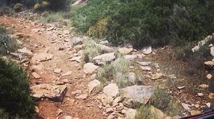 Mountain bike-Athens-Mountain bike tours in Hymettus Mountain, Athens-2