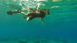 Snorkeling-Karpathos-Snorkelling excursion in Karpathos-6