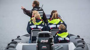 Jet Boating-Stockholm-RIB speedboat tour in Stockholm-3