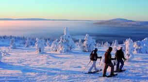 Dog sledding-Luleå-8D/7N Dog sledding and snowshoeing raid in swedish Lapland-1
