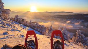 Snowshoeing-Tromsø-Snowshoeing plus sightseeing in Tesla Model X, in Tromso-5