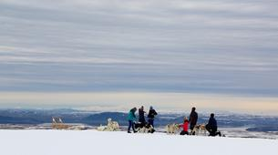 Dog sledding-Selfoss-Dog Sledding From Reykjavik-1