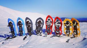 Snowshoeing-Tromsø-Snowshoeing plus sightseeing in Tesla Model X, in Tromso-2