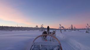 Dog sledding-Luleå-8D/7N Dog sledding and snowshoeing raid in swedish Lapland-2