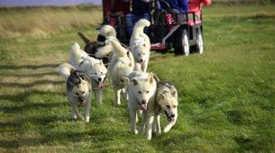Dog sledding-Selfoss-Dog Sledding From Reykjavik-6