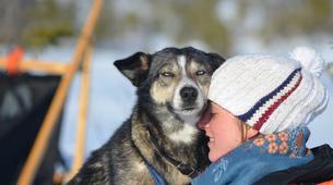 Dog sledding-Trondheim-2 day mushing excursion in Koppera near Trondheim-4