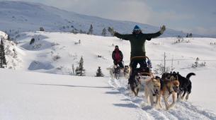 Dog sledding-Trondheim-2 day mushing excursion in Koppera near Trondheim-8