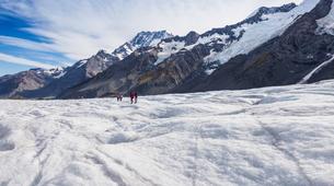 Helicopter tours-Aoraki / Mount Cook-Tasman Glacier heli hiking excursion-3
