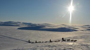 Dog sledding-Trondheim-2 day mushing excursion in Koppera near Trondheim-3