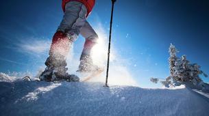 Snowshoeing-Ordino-Snowshoeing excursions in Ordino, Andorra-4