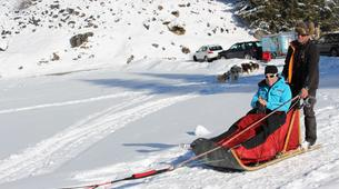 Dog sledding-Thorens-Glières-Dog sledding excursion in the Glières Plateau near Annecy-4