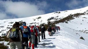 Snowshoeing-Ordino-Snowshoeing excursions in Ordino, Andorra-3