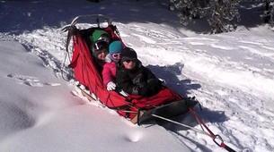 Dog sledding-Thorens-Glières-Dog sledding excursion in the Glières Plateau near Annecy-5
