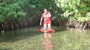 Stand Up Paddle-Morne-à-l'Eau-Excursion Stand Up Paddle dans la Réserve Naturelle du Grand Cul de Sac Marin en Guadeloupe-2
