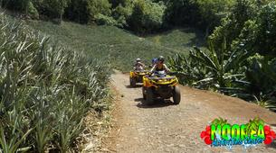 Quad biking-Moorea-Quad biking excursions in Moorea Island-6