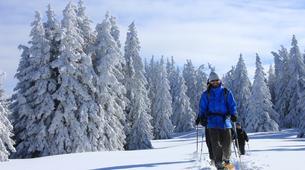 Snowshoeing-Les Arcs, Paradiski-Snowshoeing excursion in Beaufortain, near Les Arcs-4