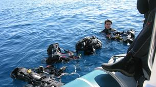 Scuba Diving-Athens-Boat dives for certified divers in Nea Makri, Athens-6