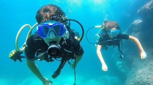 Scuba Diving-Catania-Guided scuba diving excursions on the Catania coastline, Sicily.-4