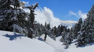 Snowshoeing-Les Arcs, Paradiski-Endurance snowshoeing excursion in Les Arcs-3