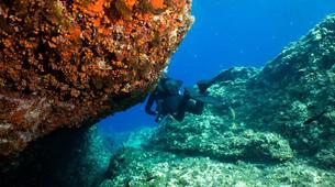Scuba Diving-Catania-Guided scuba diving excursions on the Catania coastline, Sicily.-2