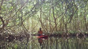 Stand Up Paddle-Morne-à-l'Eau-Excursion Stand Up Paddle dans la Réserve Naturelle du Grand Cul de Sac Marin en Guadeloupe-4