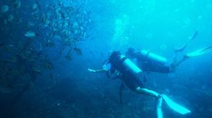 Scuba Diving-Tamarindo-Adventure dives in Tamarindo and Las Catalinas-1