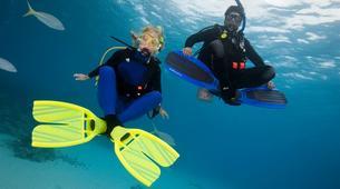 Snorkeling-Puerto Rico, Gran Canaria-Snorkeling excursion in Amadores Beach near Puerto Rico, Gran Canaria-2