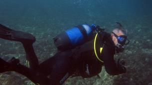 Scuba Diving-Athens-Boat dives for certified divers in Nea Makri, Athens-3
