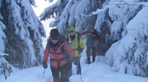 Snowshoeing-Chamonix Mont-Blanc-Snowshoeing excursion in Saint-Gervais Mont Blanc-4