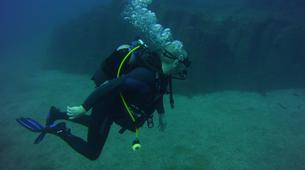 Plongée sous-marine-El Médano, Tenerife-SNSI Open Water Course in Los Abrigos near El Medano-6